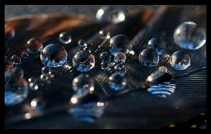 Liquid Luster by Jenni77