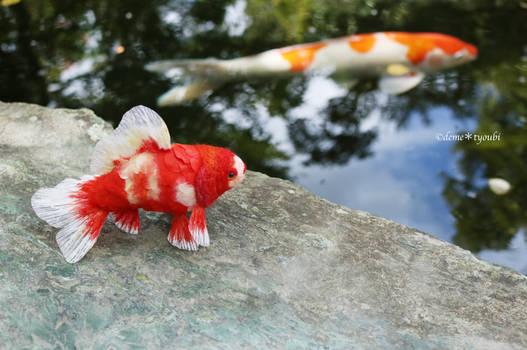 Needle felted goldfish Wakin