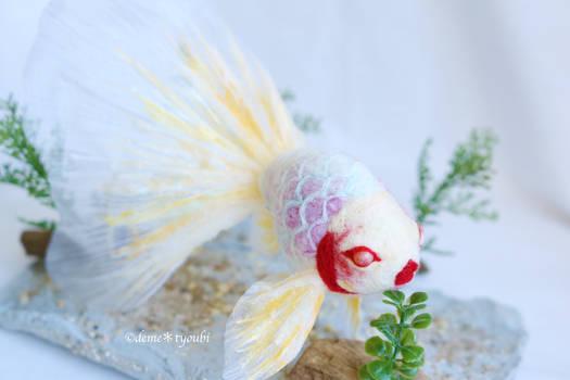 Needle felteing goldfish Yuki Beni-Haru- Snow