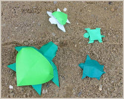 Tortuguitas - Little turtles by Figuer