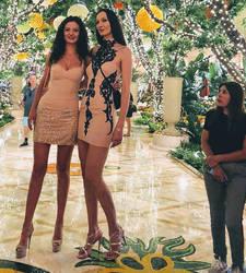 195 - 206cm women in heels by zaratustraelsabio