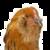 Chicken by MADZemoteFreak