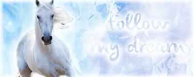 Follow my dream by lilylolalay