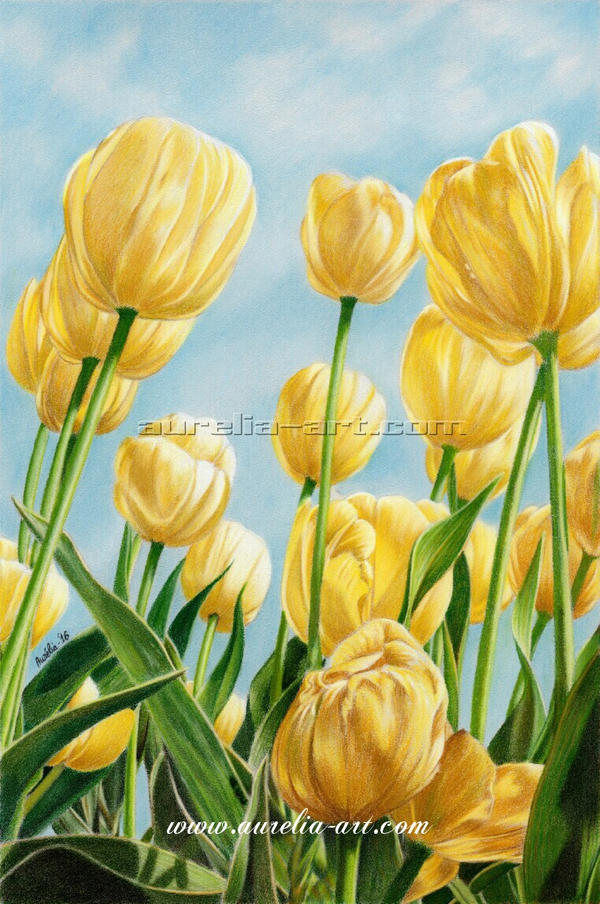 Colors Of Spring by aurelia-acc