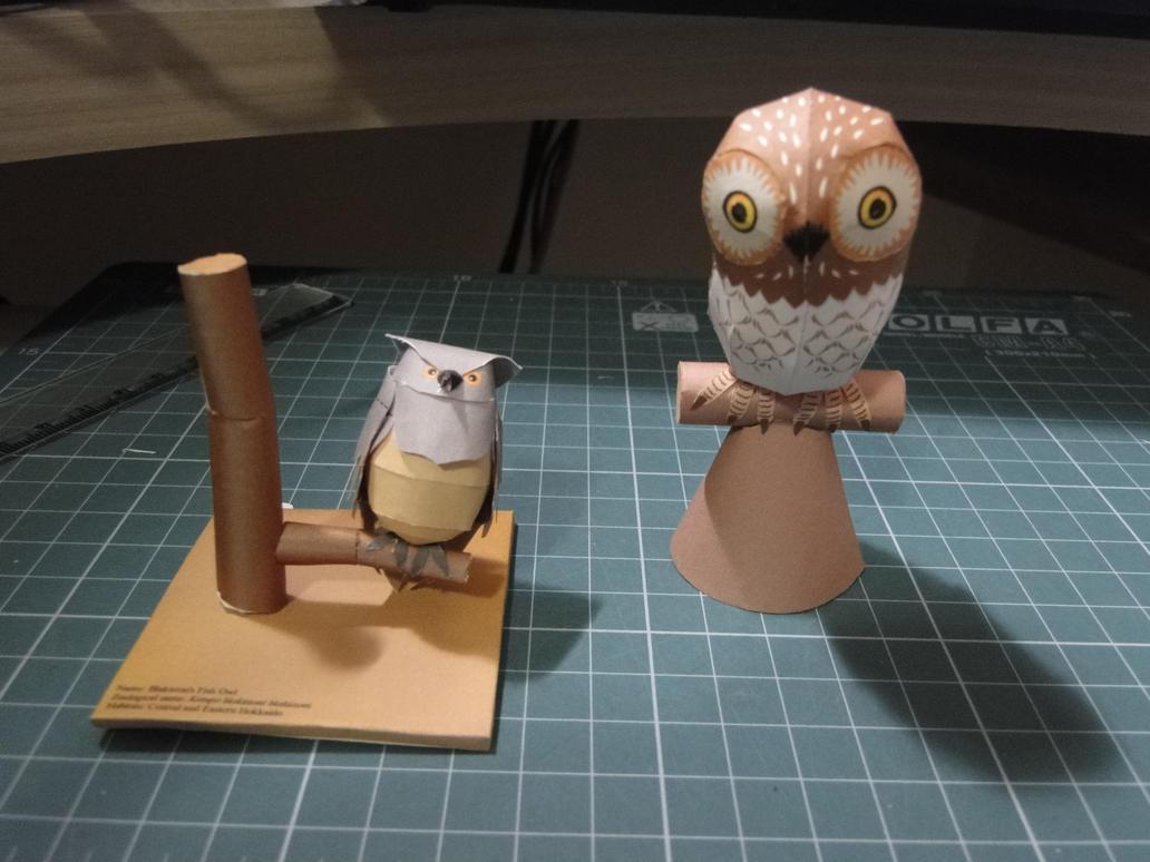 Owl papercraft by bslirabsl on deviantart owl papercraft by bslirabsl jeuxipadfo Image collections
