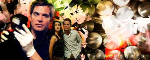 Tony and Ziva by wales48