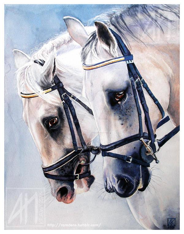 Horses by ramdens
