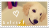 Golden Retrievers - Stamp by CatherineHH