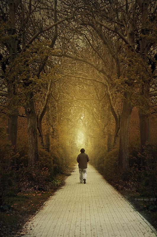 By autumn by OmarAziz