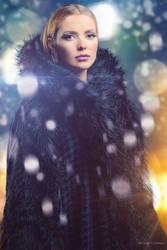 it's Just Winter by OmarAziz