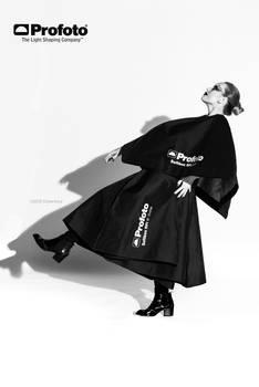 Profoto Fashion 2