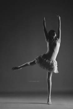 ballet in 2015