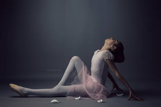 End ballet in 2016