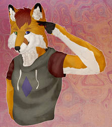 Awesome Fox by Derlusti(Commission Repost!)