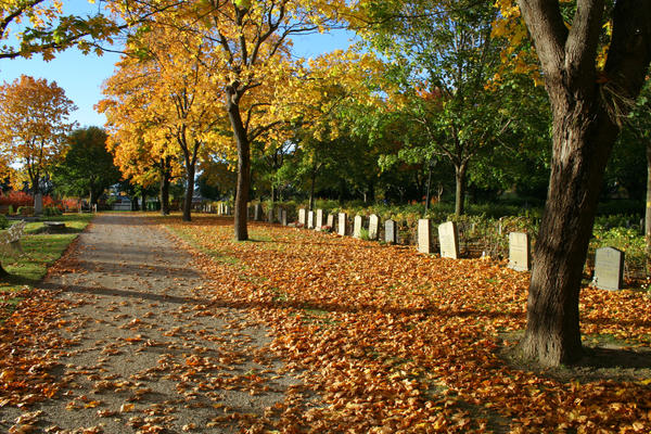 Graveyard by TwiggXstock