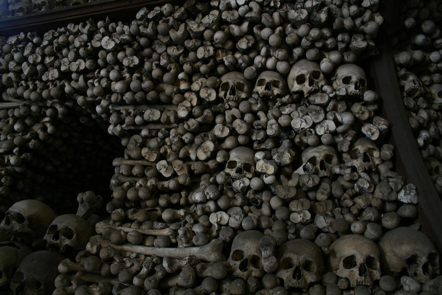 Skulls 3 by TwiggXstock