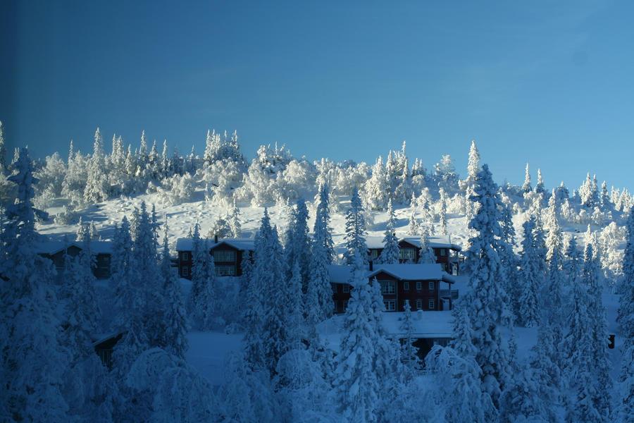 Swedish winter 1 by TwiggXstock
