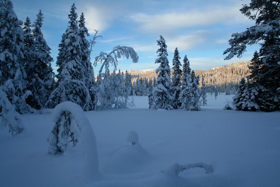 Swedish winter 2 by TwiggXstock