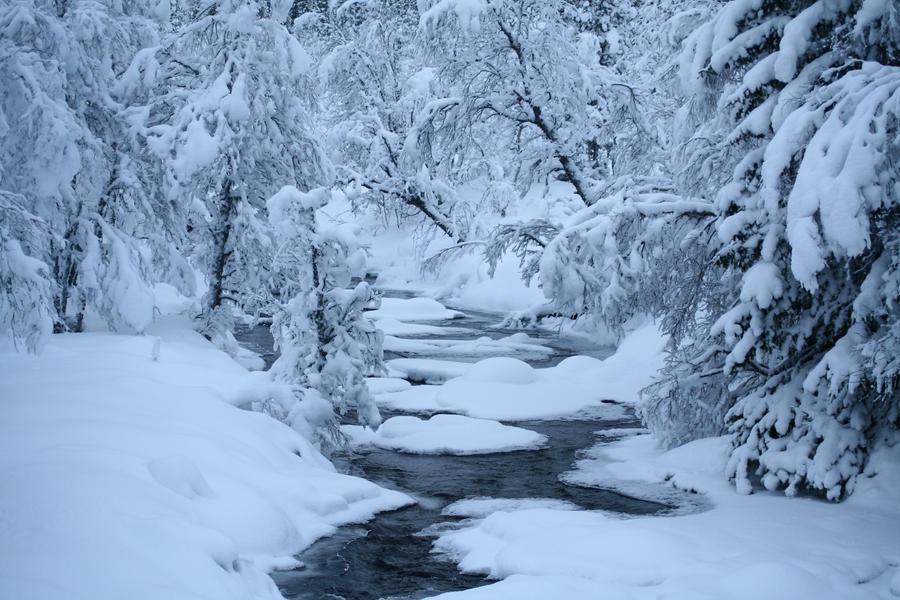 Swedish winter 5 by TwiggXstock