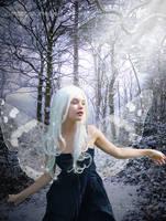 Winter Fairy by MorganMediaCo
