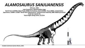 Alamosaurus sanjuanensis Skeletal I
