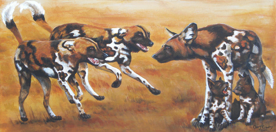 African Wild Dog by silvercrossfox