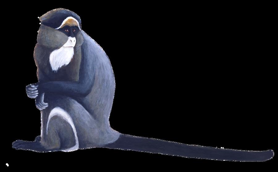Monkey by silvercrossfox