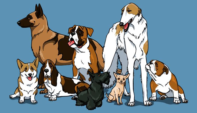 Dogs by silvercrossfox