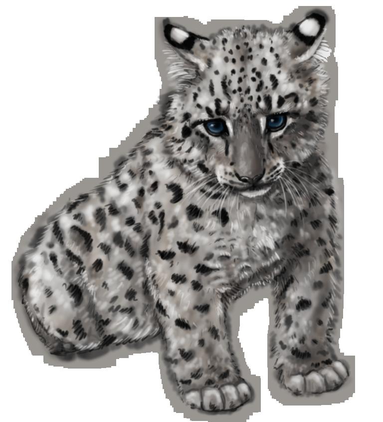 Snow Leopard Cub by silvercrossfox