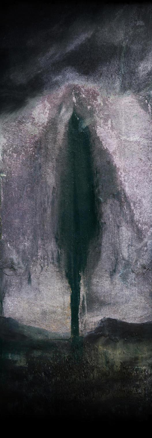 Lucid Shadow by TALONABRAXAS