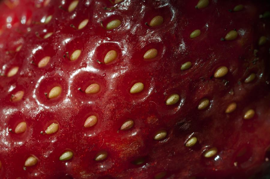 strawberry skin by KateJones92