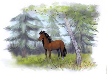 Ponny i skog by Bagini