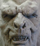 orc face close up...