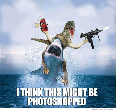 Photoshop by Zuerel