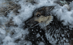 Gray anguish ice shards covered the soul of restle by FeurigenSatan