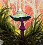mushroom in the grass by FeurigenSatan