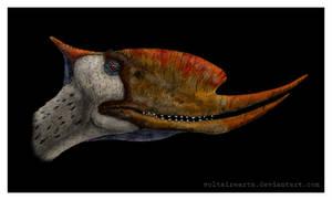 Dsungaripterus color