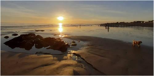 aldwick xmas on the beach1