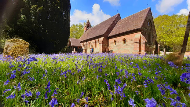 Ebernoe Church with Bluebells