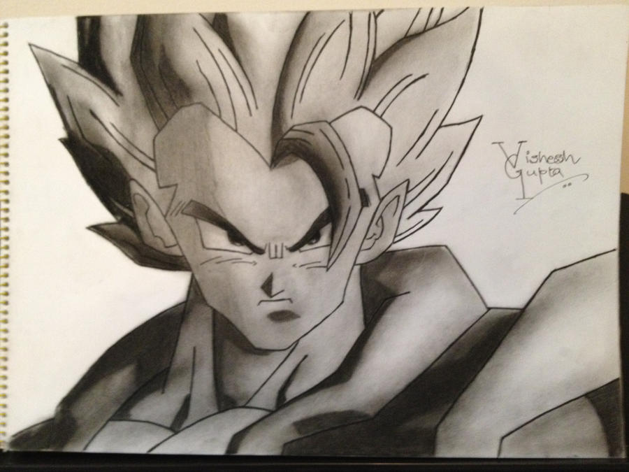 Goku dragon ball z dbz by vishesh999