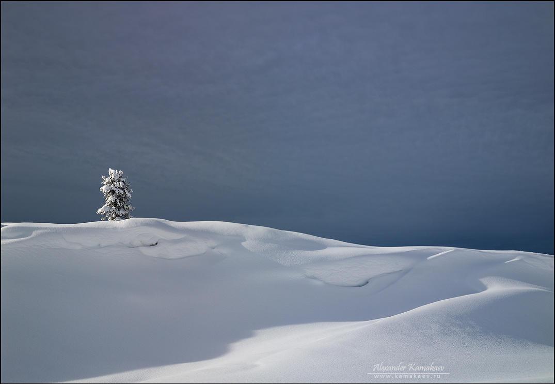Laconic landscape by Kamakaev