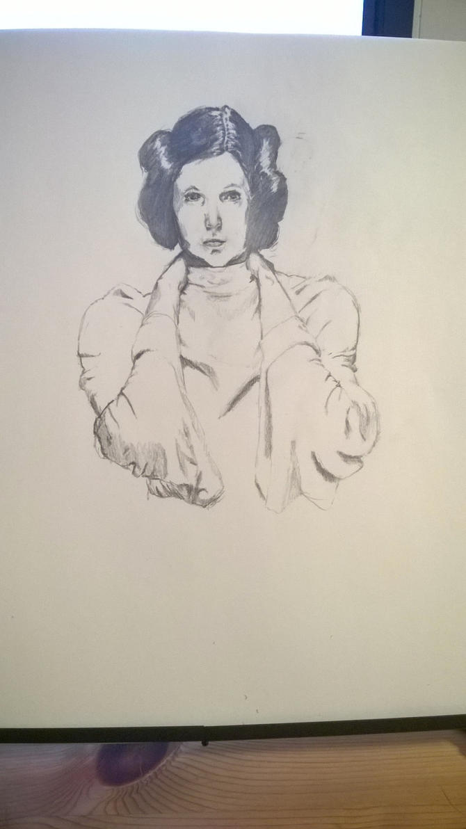 Leia Organa by Mr-bananasham