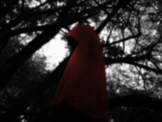 Red Riding Hood 20