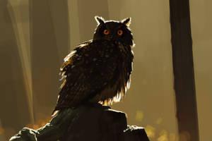Owl by c22dunbar