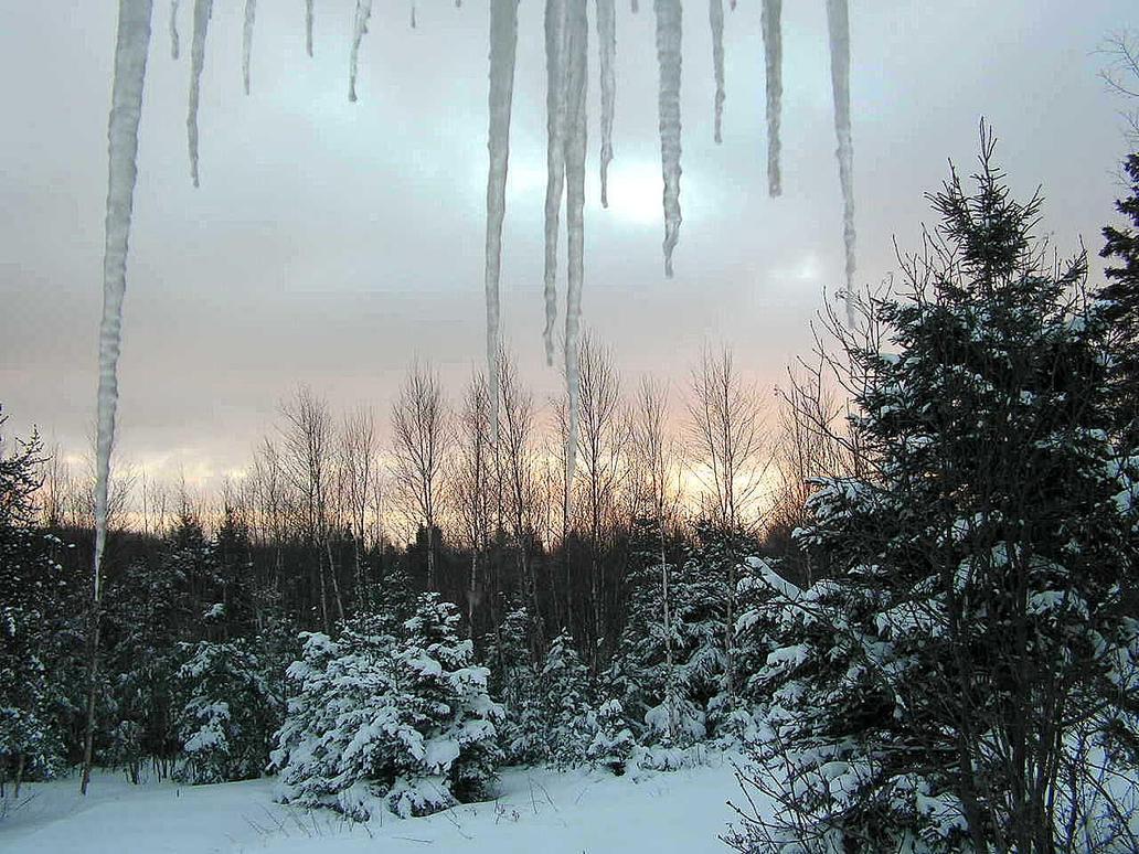 Winter Scenery by JocelyneR