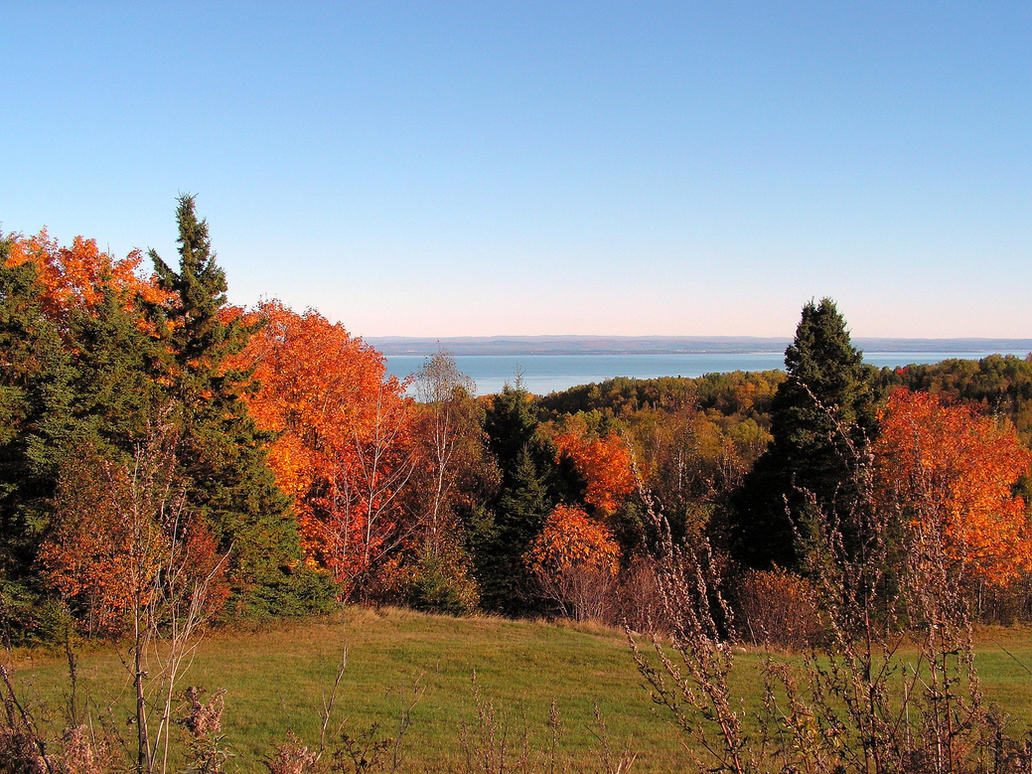 Autumn Scenery by JocelyneR