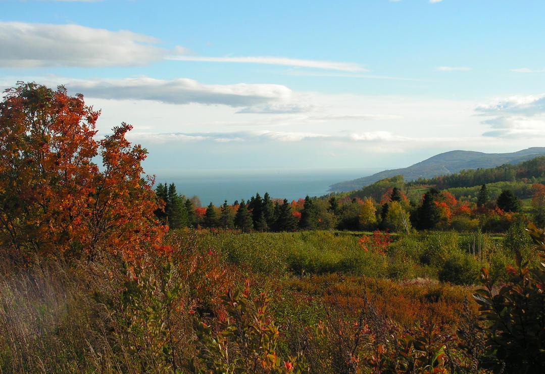 Autumn Colours by JocelyneR