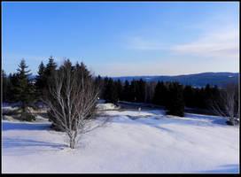 Winter at Easter by JocelyneR