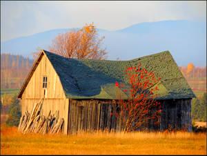 Abandoned Barn by JocelyneR