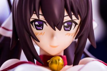Houki (IS) (closeup shot)